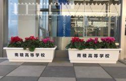 鹿本農業高校 生徒さんの花卉展示について(11月)